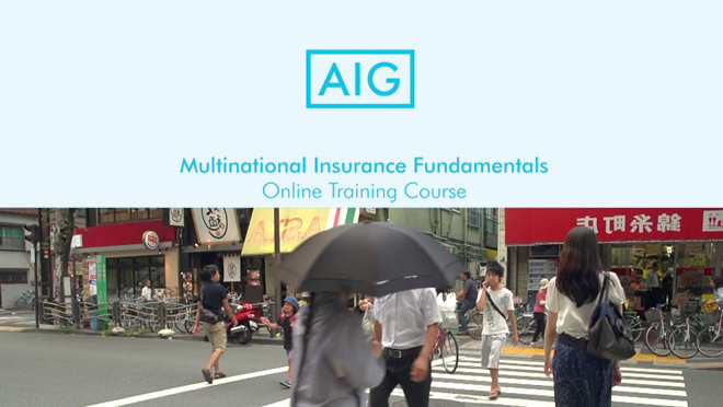 AIG Multinational Insurance Fundamentals