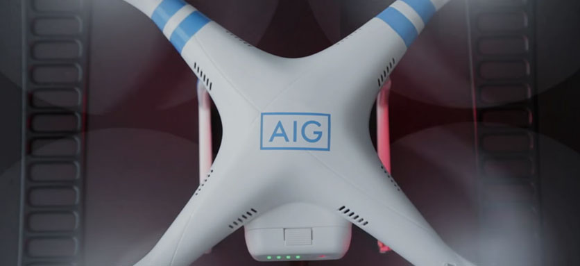 Drones for Risk Assessment and Management (Anglais)